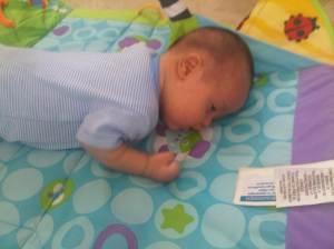6 semanas de nacido